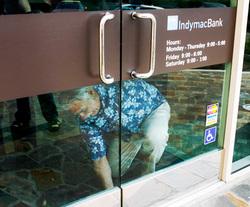 700 banques américaines proche de la faillite