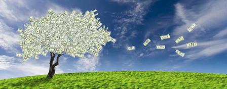 L'environnement, l'oublié des plans de relance