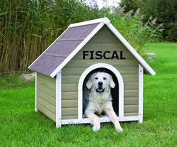 Top 10 des niches fiscales coûteuses et inefficaces