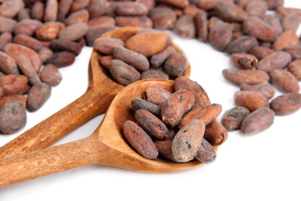 Crédit photo : cacao par Shutterstock