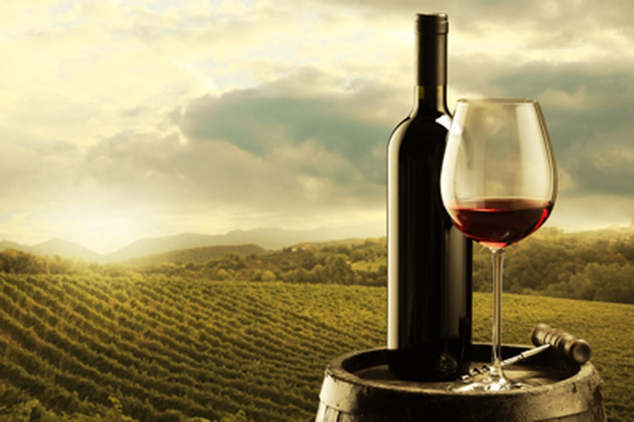 Vin : les nouvelles tendances décryptées