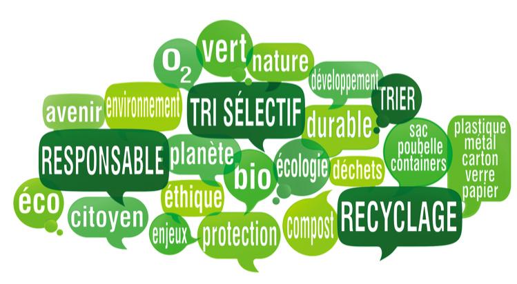 Développement durable : l'engagement des dirigeants est en hausse