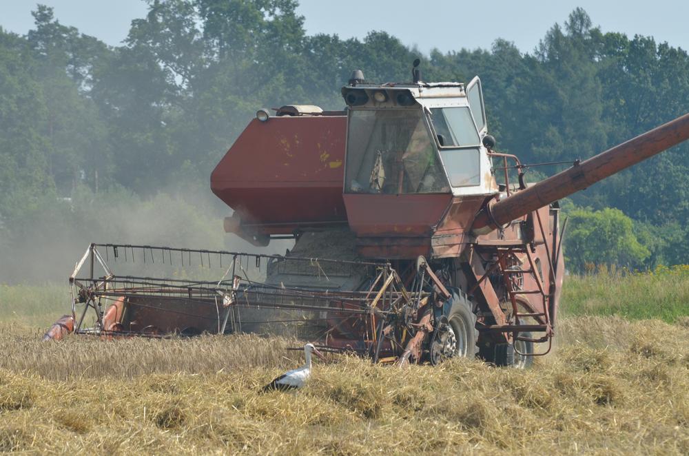 Crédit : agriculture par Shutterstock