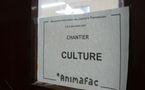 Culture et croissance, deux notions compatibles