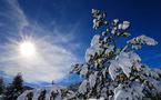 Ski vs soleil : le match des vacances de février