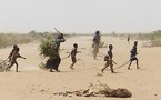La famine : un fléau sous estimé