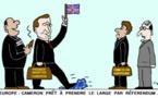 Royaume-Uni - Union européenne : un mariage de raison