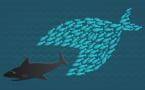 L'économie collaborative, nouvelle norme