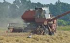 L'agriculture française à l'heure des choix