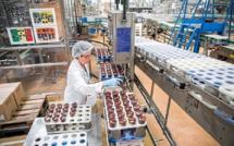 Covid-19 : comment se porte le secteur agroalimentaire ?